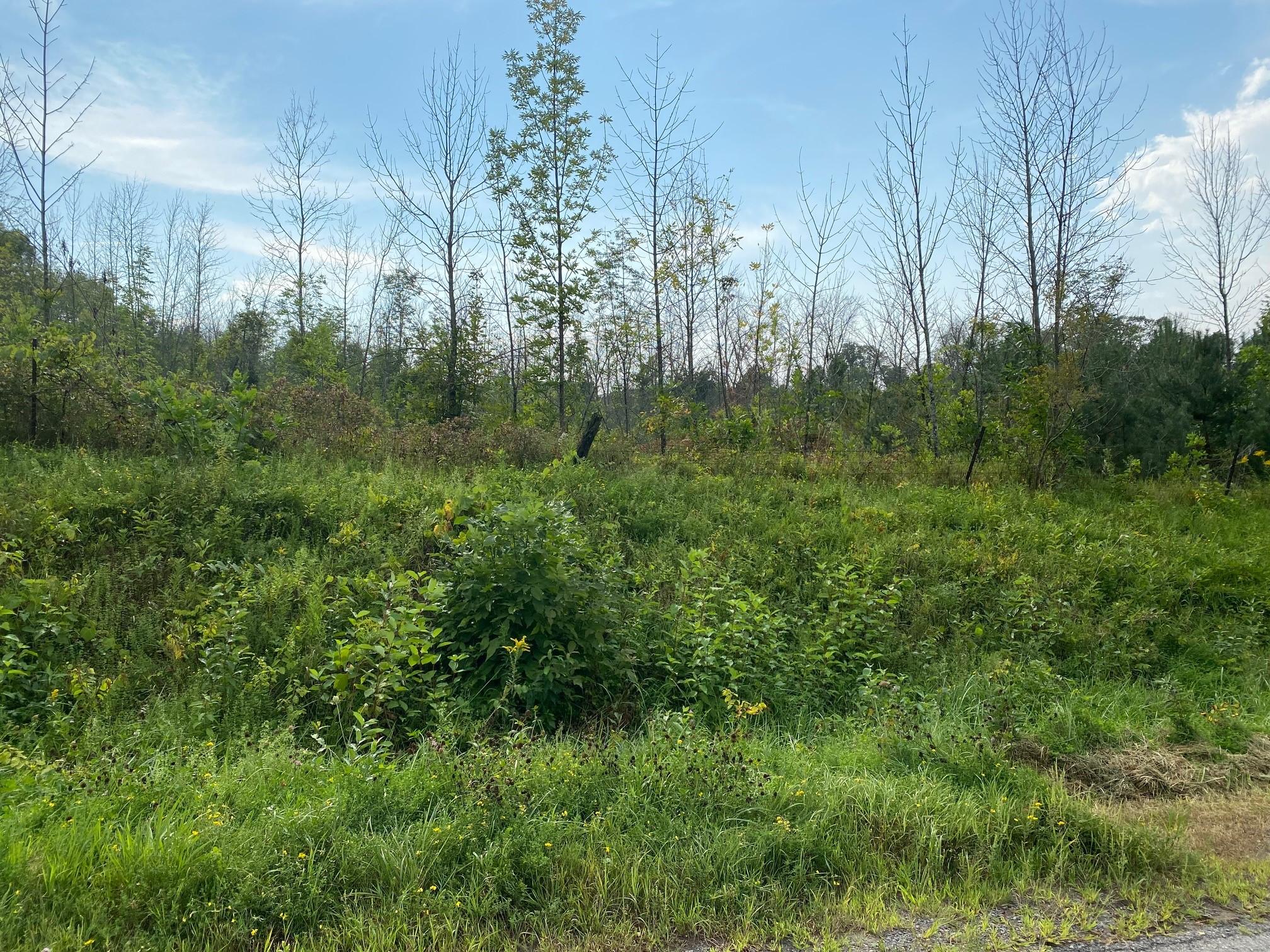 Lot 11 Sully Road, Township Of Hamilton, Ontario    - Photo 1 - x5300217