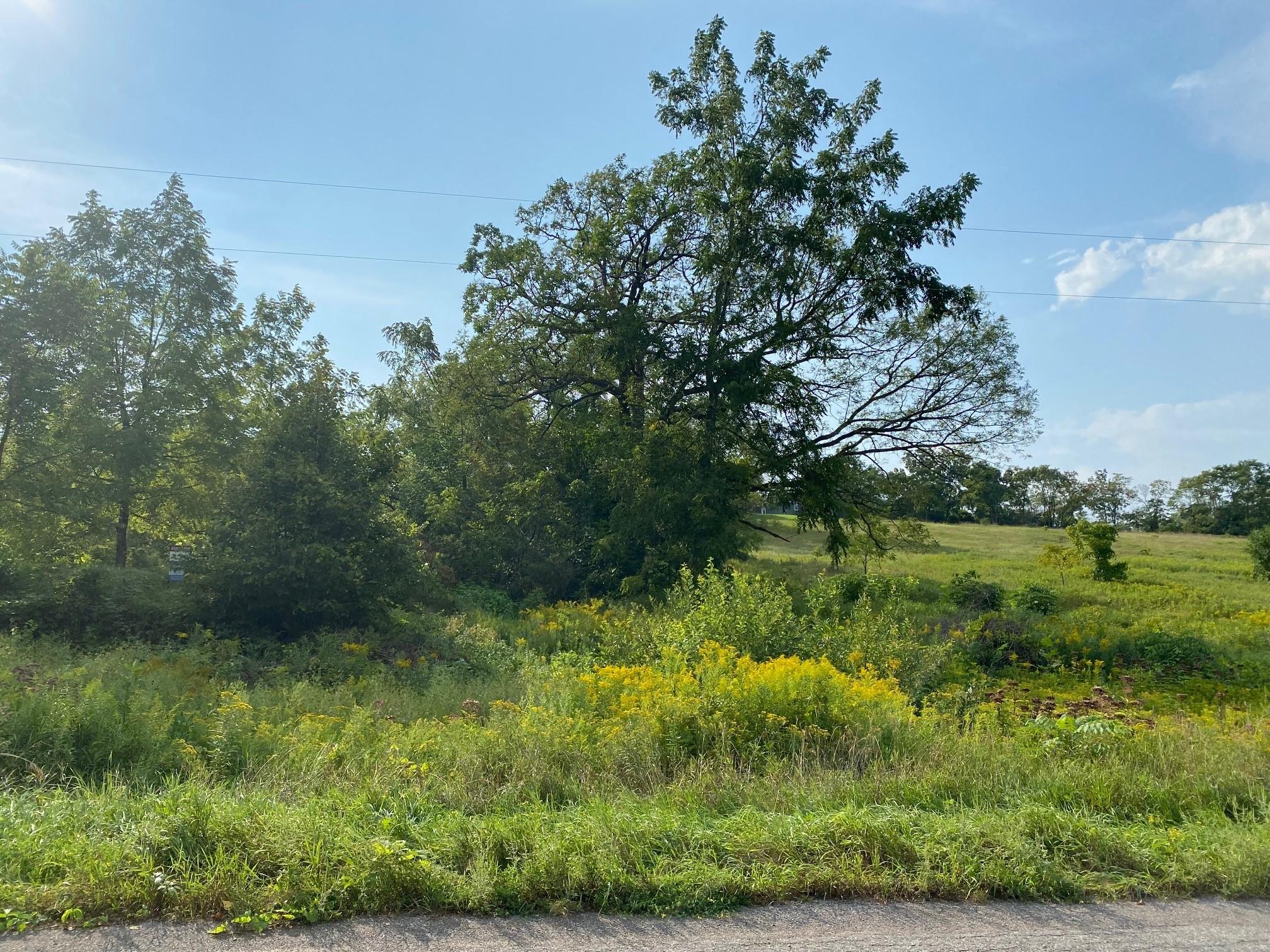 Lot 15 Sully Road, Gore's Landing, Ontario    - Photo 1 - x5300564